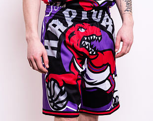 Kraťasy Mitchell & Ness Toronto Raptors Big Face