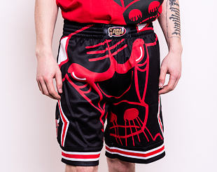 Kraťasy Mitchell & Ness Chicago Bulls 97-98 NBA Finals Big Face
